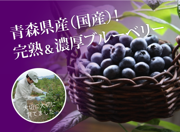 blueberry_i01