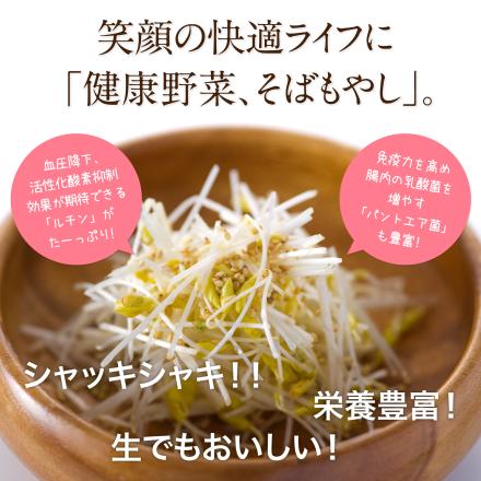 sobamoyashi_i01