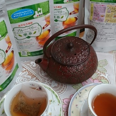 ブルーベリー葉茶画像A